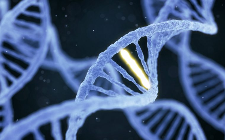 Serum Proteins May Be Used to Aid Diagnosis and Prognosis of FAP, Study Finds