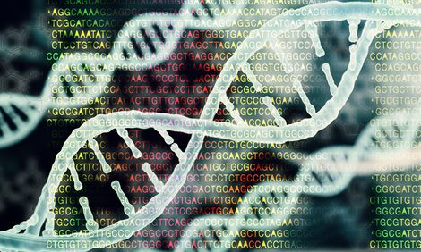 Age-related Changes in TTR Gene Expression May Explain Disease Differences Within Families, Study Suggests